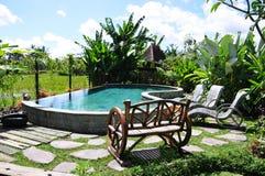 сад тропический Стоковая Фотография