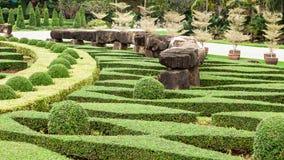Сад утеса Стоковое Изображение RF