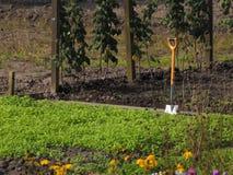 Сад уделения Стоковая Фотография