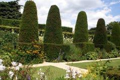 Сад фигурной стрижки кустов Стоковое Изображение RF