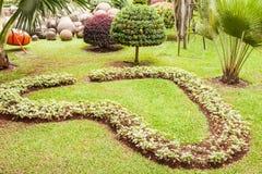 Сад формы сердца Стоковая Фотография
