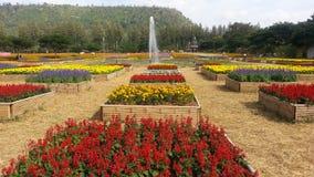Сад цветет в много цветов, много вариантов с фонтаном Стоковое Изображение RF