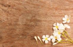 Сад цветет над таблицей которая сделала от древесины стоковое изображение rf