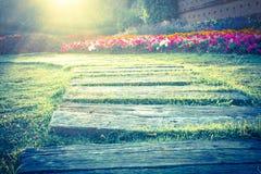 Сад цветков, винтажный свет стиля. Стоковые Фотографии RF