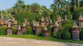 Сад цветов сада Таиланда Nong Nooch парка тропического стоковая фотография rf