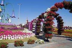 Сад чуда, Дубай Стоковая Фотография RF