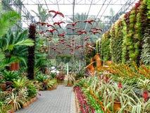Сады в Таиланде Стоковая Фотография RF