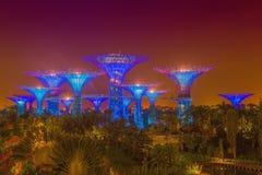 Сады заливом на ноче стоковые изображения rf