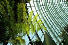 Сады заливом Стоковые Фото
