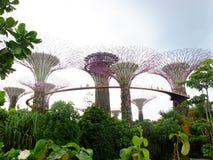 Сады заливом Стоковое фото RF