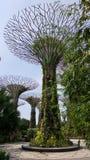Сады заливом Стоковое Изображение RF