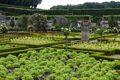 Сады и Замок de Villandry стоковое изображение