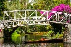 Сады красочного мексиканськие Xochimilco плавая в Мехико стоковое фото rf