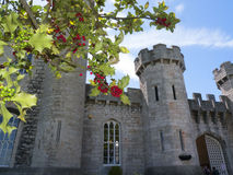 Сады на замке Bodelwyddan в северном Уэльсе Стоковое Изображение