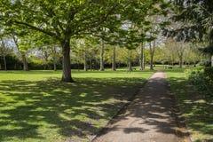 Сады лоз в Rochester, Великобритании Стоковая Фотография