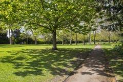 Сады лоз в Rochester, Великобритании Стоковое фото RF