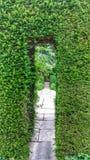 сады Стоковое Изображение
