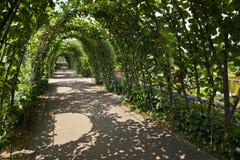 Сады Kensington в Лондоне стоковое фото rf