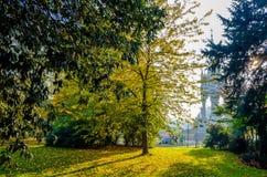 Сады Kensington и мемориал Альберта в осени освещают стоковые фотографии rf