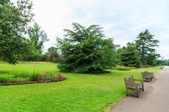 Сады Kew, Англия Стоковое фото RF