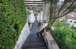 Сады Salerno Minerva Стоковая Фотография