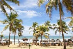 Сальвадор de Бахя Стоковая Фотография