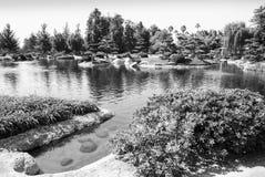 Сад японского стиля с прудом 3 Стоковое Изображение