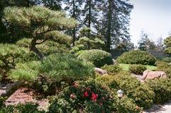 Сад 3 японского стиля Стоковое Фото