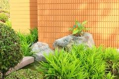 Сад Стоковое Изображение RF