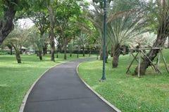 Сад Стоковое Фото