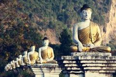 Сад Buddhas Стоковое Изображение