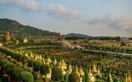 Сад Frantsujsky сада Таиланда Nong Nooch парка тропического стоковые изображения rf