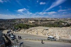Сад Gethsemane, Иерусалима, Израиля Стоковые Изображения RF