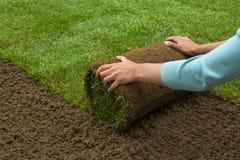 Сад Lawned Стоковое Изображение RF