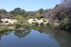 Сад Shinjuku Gyoen национальный - токио Стоковая Фотография RF