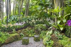 Сад Singapure ботанический стоковое изображение