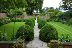 Сад Tintinhull, Сомерсет, Англия, Великобритания Стоковое фото RF