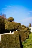 Сад Versaille Стоковое Изображение