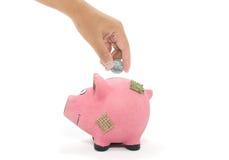 сбережениа дег банка piggy кладя Стоковое Изображение