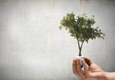 сбережениа иллюстрации энергии славные мягкие Стоковое Изображение