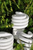 сбережениа lightbulb энергии Стоковые Изображения RF