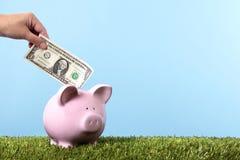 сбережения банка piggy Стоковые Фотографии RF