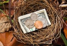 сбережения гнездя яичка Стоковое Изображение