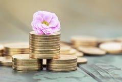 Сбережения денег - монетки весной Стоковые Фотографии RF