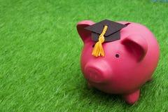 сбережения образования Стоковые Изображения