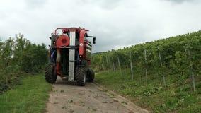 Сбор вина на винограднике на реке Mosel в Германии Механически сбор с самоходной жаткой виноградины акции видеоматериалы
