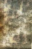 сбор винограда большой бумаги Стоковая Фотография