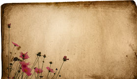 сбор винограда бумаги цветка предпосылки Стоковое фото RF