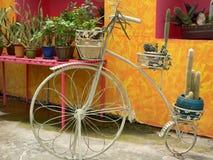 сбор винограда велосипеда Стоковые Изображения