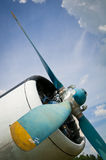 сбор винограда воздушных судн Стоковая Фотография